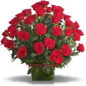 50 Rosas Rojas a Domicilio Bogota
