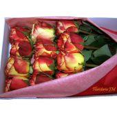 Caja de 24 Rosas Domicilio Bogota