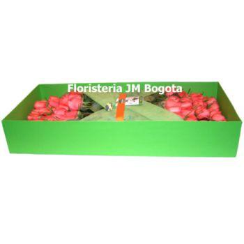 Vista Lateral 99 Rosas Exportación Tallo Largo