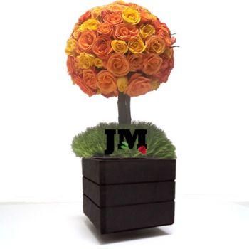 Topiario Esferico de Rosas