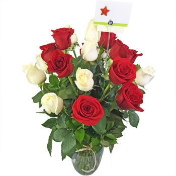 18 Rosas Rojas y Blancas