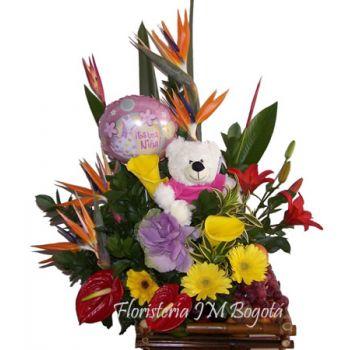 Flores Frutas Oso Globo Nacimiento Niña Bogotá