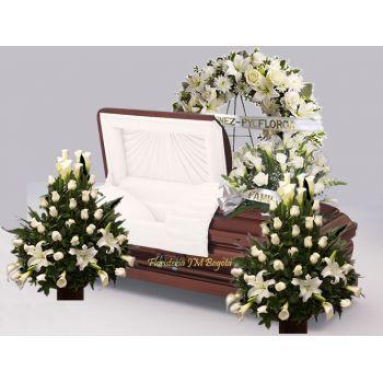 Flores Funerales, decoracion de sala de velación