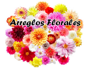 Flores Dia de La Madre a Domicilio en bogota