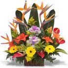 Arreglos Florales a Domicilio en Bogota