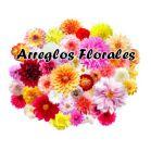 Flores Regalo Dia de La Madre Bogota Domicilio Colombia