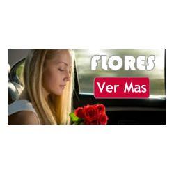 Flores Día de La Mujer, Bogota Colombia