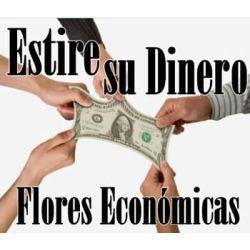 Flores Económicas