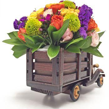 Camion de Rosas Regalo enviar a Bogota