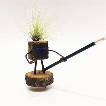 Lapicero en forma de tronco