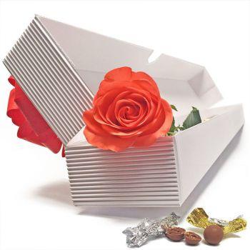 Solitario (Rosa) en caja Bogota