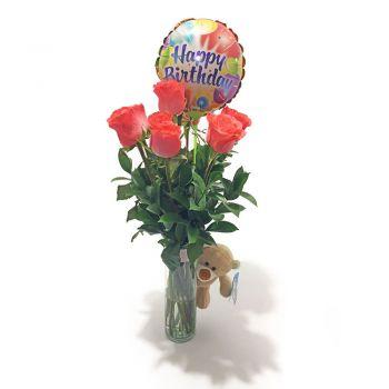 7 Rosas Peluche y Globo